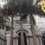 Bán nhà biệt thự An Phú An Khánh mặt Hồ Sinh Thái