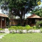 Cho thuê Villa gỗ Thảo Điền rộng đẹp